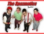 Spazmatics Seattle